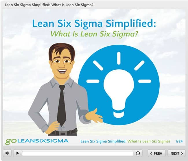 Webinar: What Is Lean Six Sigma?
